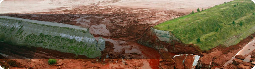 Liability for environmental damage