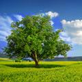 EIA – posudzovanie vplyvov na životné prostredie